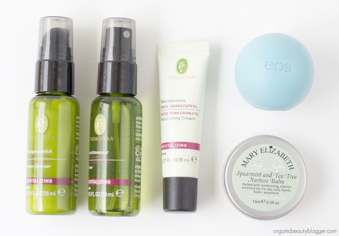 Organic Beauty Blogger Skincare Travel Bag